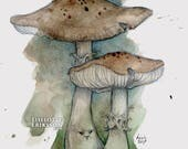 Mushrooms - original watercolour illustration