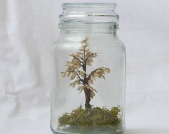 Tree of paper in a jar