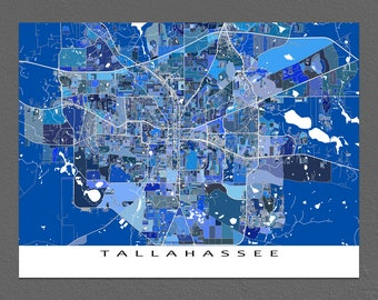 Tallahassee Map Print, Tallahassee Florida, USA City Map Art