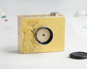 Pinhole camera, 120 film, format: 4.5x6