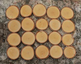 """2""""-2.5"""" 20 White Birch Slices"""