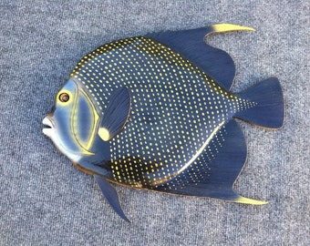 French Angelfish Wood Carving