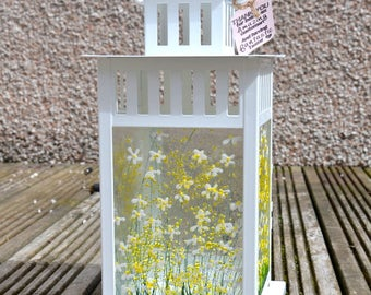 Handmade Fused Glass Art - Daisy Lantern