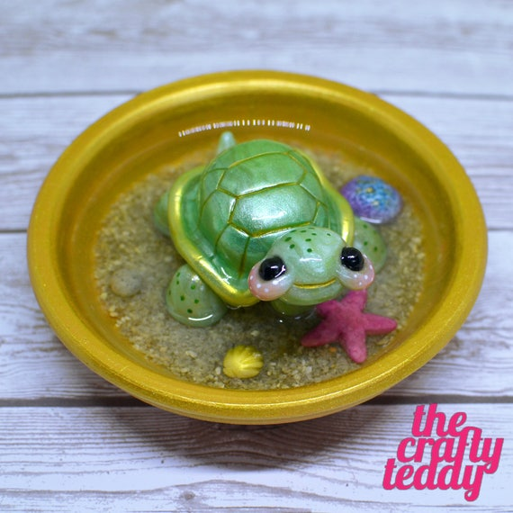 Happy Turtle in a Pot