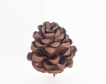 Pinecones Gumpaste Sugar Paste Cake Topper for Rustic Woodland Weddings, birthdays, bridal showers
