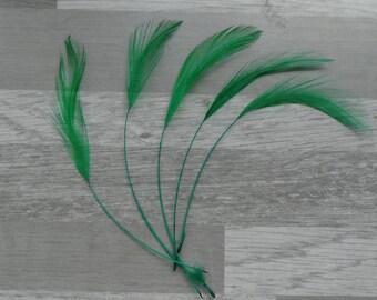 set of 5 Rooster spinning dark green
