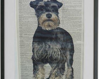 Schnauzer Print No.471, minature schnauzer, mini schnauzer, schnauzer gifts, schnauzer art, dog poster, dictionary page prints