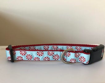 Peppermint 1 inch Collar
