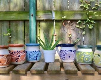 Coffee Mug & Aloe Vera Plant // Organic Aloe Vera // Authentic Mexican Handpainted Mug // Pottery Coffee Mug //  // Coco Mug
