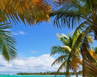 Sea Beach Backdrop - seaside, summer, palm, wedding, sunny sky - Printed Fabric Photography Background W1267