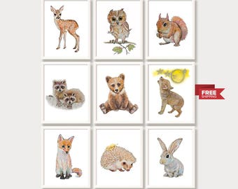 Baby Animal Prints Woodland Nursery Decor Forest Animals Woodland Creatures Watercolor Paintings Nursery Wall Art Print Set 9 Free shipping