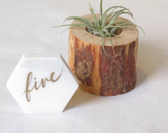 """2.25"""" Marble Hexagon Table Numbers, White and Gold"""