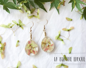 Dangle earrings with maple seeds immortalized in resin - natural jewelry
