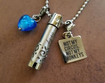 Stainless Steel Essential Oil Aromatherapy Diffuser Necklace