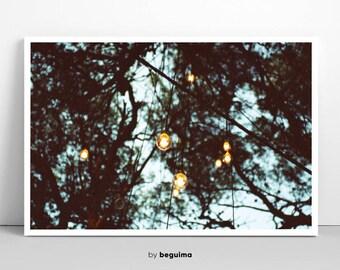 Forest Photography, Trees Art Print, Lightbulb Poster, Lights, Bulb, Pines Photo, Woods Prinatble, Inspirational Wall Art, Digital Download
