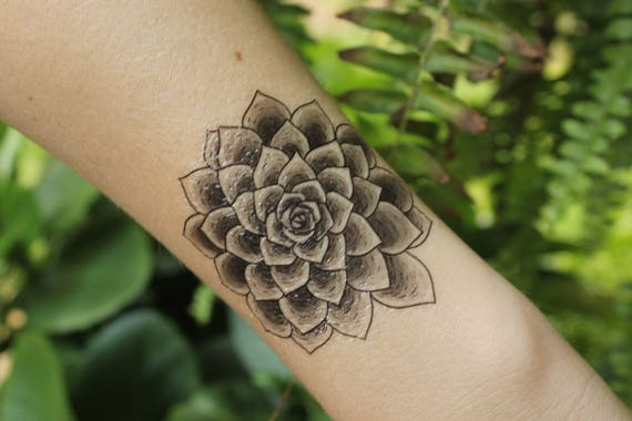 Succulent Temporary Tattoo, Desert Succulent Plants, Black Line Drawing, Nature Tattoo