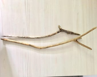 2 large branches of drift wood - wood seawood Driftwood branches