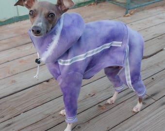 Running Suit for Italian Greyhound