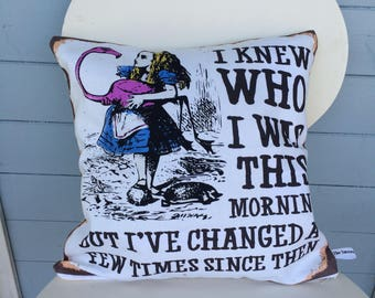 Alice in Wonderland cushion - pillow - I knew who i was this morning - White Rabbit - Mad Hatter