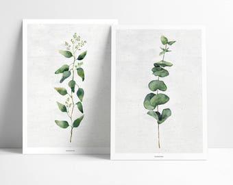 Poster / plant No.. 1 + 2