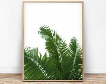 Palm Leaves, Palm Leaf Print, Dark Green Decor, Tropical Wall Art, Tropical Printable, Summer Print, Summer Printable, Tropical Photo