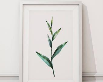 Botanical Leaf Print No.5 on Watercolour Paper - Fine Art Print of a Leaf Watercolour Painting