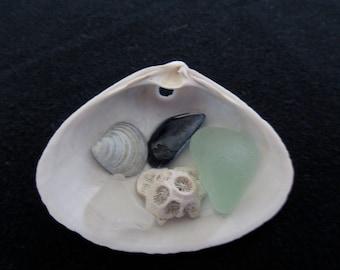 Tiny Treasure Shell with sea glass.