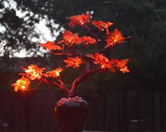 Fall Twin Trunk Bonsai LED Tree