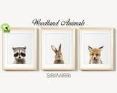 Woodland Nursery Decor, Baby Animal Set 3, Bunny Rabbit Raccoon Fox, Nursery Prints Modern Animal Art, Woodland Animals, Kids Room Printable