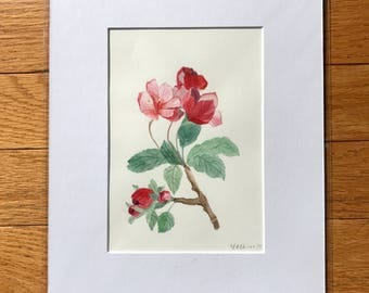 SALE 8x10, Apple blossom, Original watercolor, watercolor painting, floral illustration, blossom  painting, small painting, original artwork