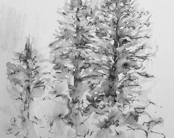 "Pen and ink, watercolor ""Silver trees"" original"
