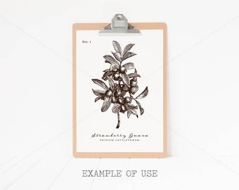 Styled Stock Photography - Clipboard Mock Up - A3 - 29.7cm x 42cm - High Resolution JPEG + PSD file with Smart Object