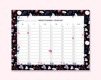daily scheduler