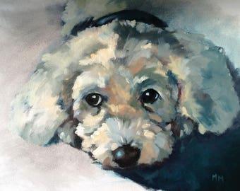 Custom Pet Portraits - Oil