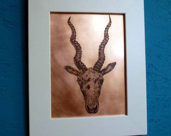 Antelope Copper Etching | Framed Image | Wall Art | Art | Etched Image