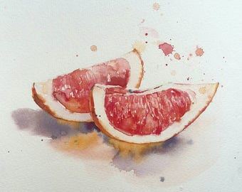 Grapefruit watercolor painting
