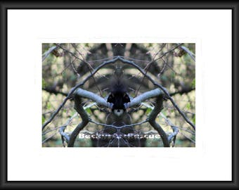 Creepy Creature, Photography, Free Shipping, Canvas Wrap, Canvas Framed, Print, Print Framed, Ontario Canada, SiFi, Wall Art, Abstract, Art