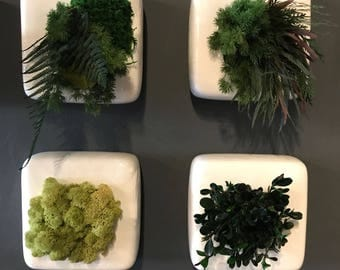 Set of Moss Planters (4)