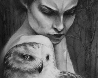 Dark Owl Portrait | The Guardian | Fine Art Print