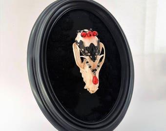 Flying Fox Skull Taxidermy Gothic Wall Art Decor