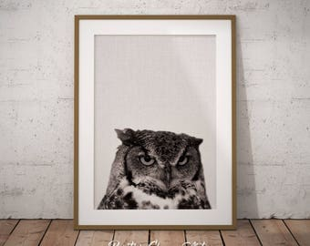 Woodland Owl Art, Forest Owl Art, Forest Animals Owl, Nursery Wall Owl Art, Woodland Owl Print, Owl Art Print, Owl Print, Forest owl print