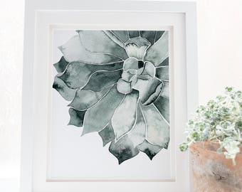 Cactus poster, Succulent print, cactus print, Cactus art, Cactus kitchen decor, Cactus printable, Cactus wall art, Botanical print, Tropics,