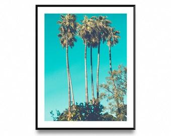Palm Trees Print, Tropical Wall Art, Palm Tree Photo, Palm Print, Tropical Print, Scandinavian Print, Printable Art