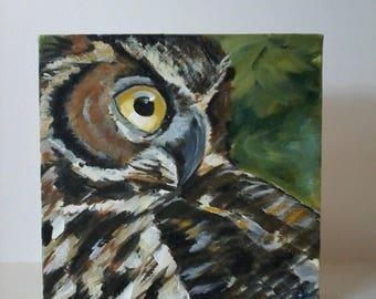 "6x6 acrylic painting ""Owl""."
