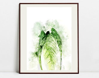 Cabbage Watercolor Art Print, Cabbage Illustration, Kitchen Wall art, Kitchen Wall Decor, Vegetable Print