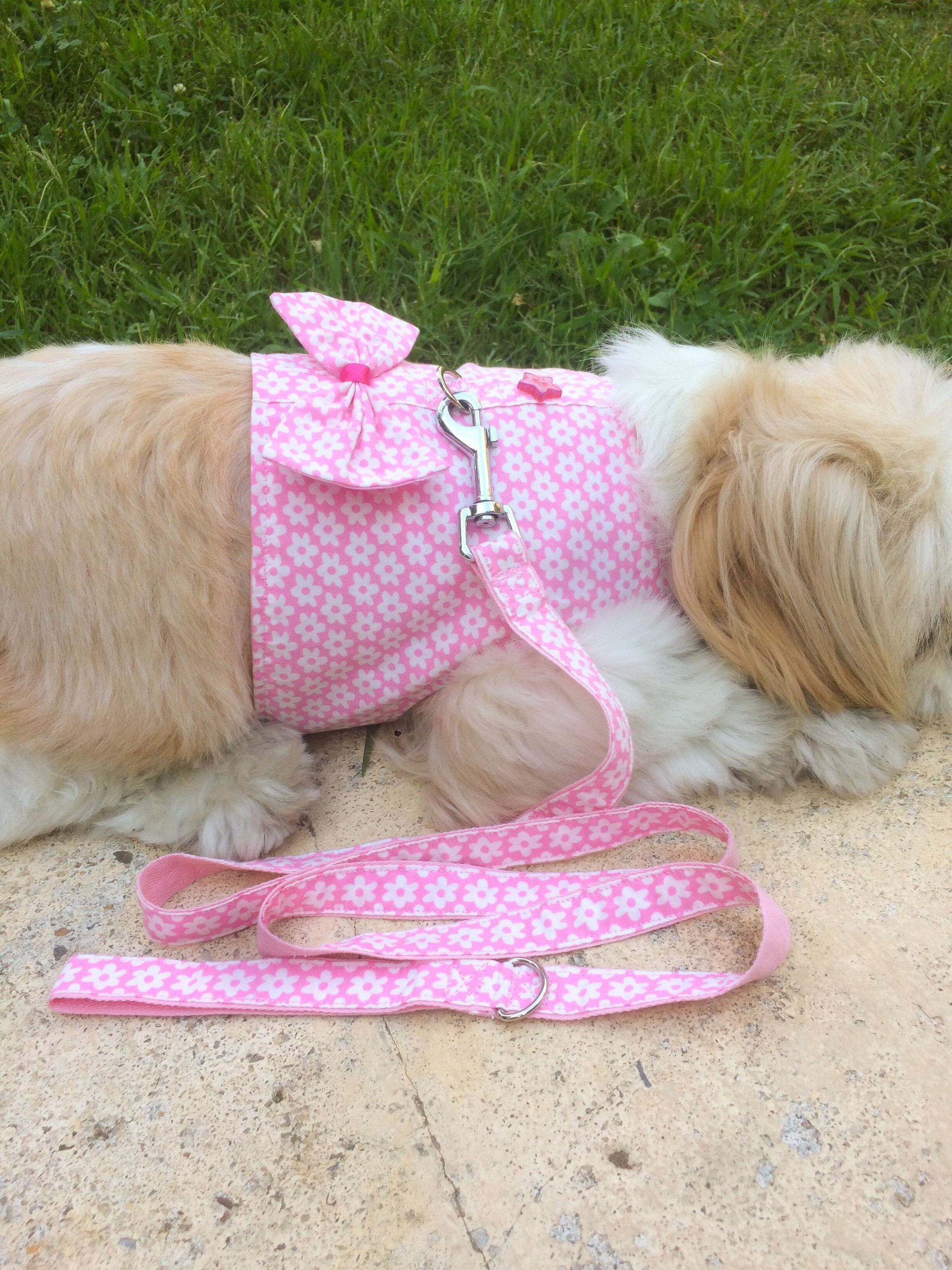 Floral Shih Tzu Dog Harness Uk