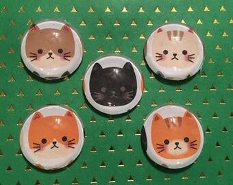 Cat Magnets / Magnet