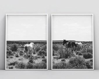 Horse Print, Black and White Photography, Horse Print Wall Art, Wild Horse Photo, Wilderness Print, Equestrian, Printable Art, Set of 2 Art