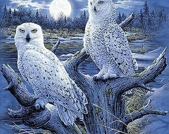 Moonlight White Owls Cross Stitch Pattern***LOOK***