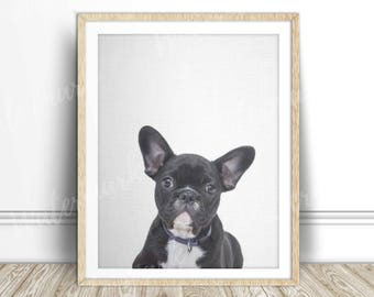French bulldog canvas art print Black dog wall art nursery poster Digital printable Instant Download